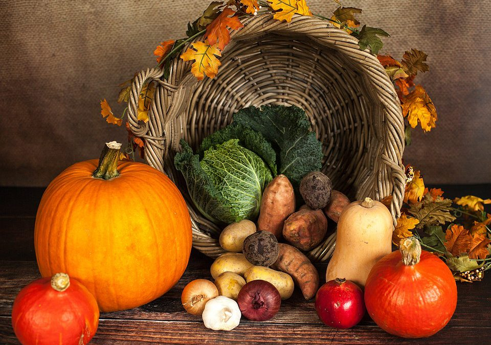 Thanksgiving Forecast – Who Could See Rain Or Snow?