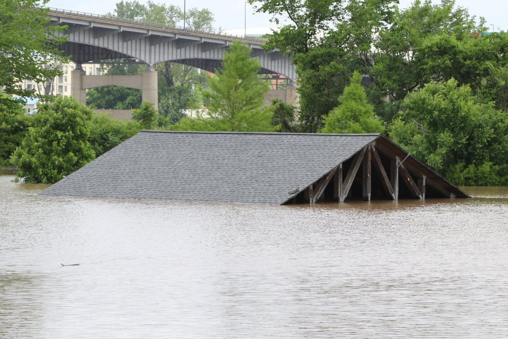 Arkansas River Flooding in May 2019 at the Clark Wetlands showing turtles seeking refuge on roof of pavilion via United States Army Corps of Engineers.