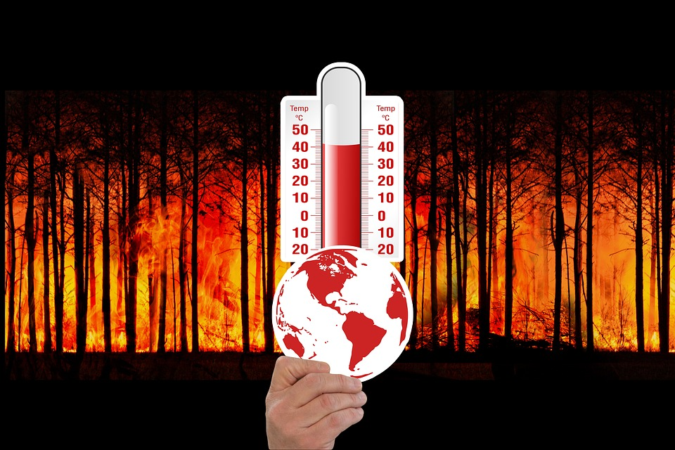 The Intergovernmental Panel on Climate Change Dropped Humanity's Report Card